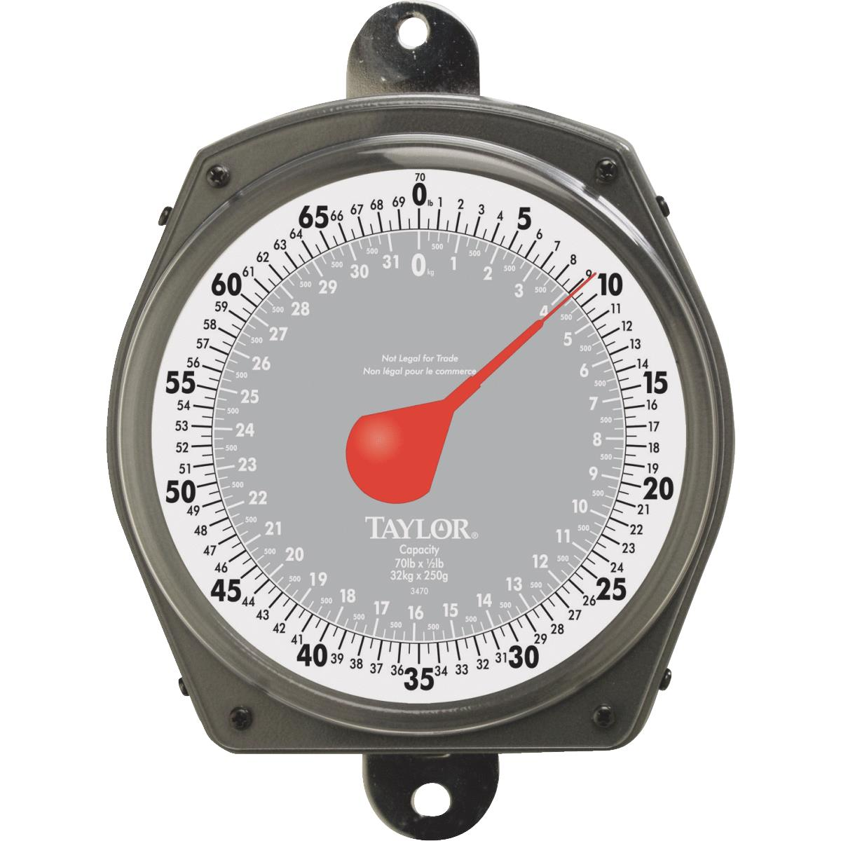 Taylor Dial Hanging Scale