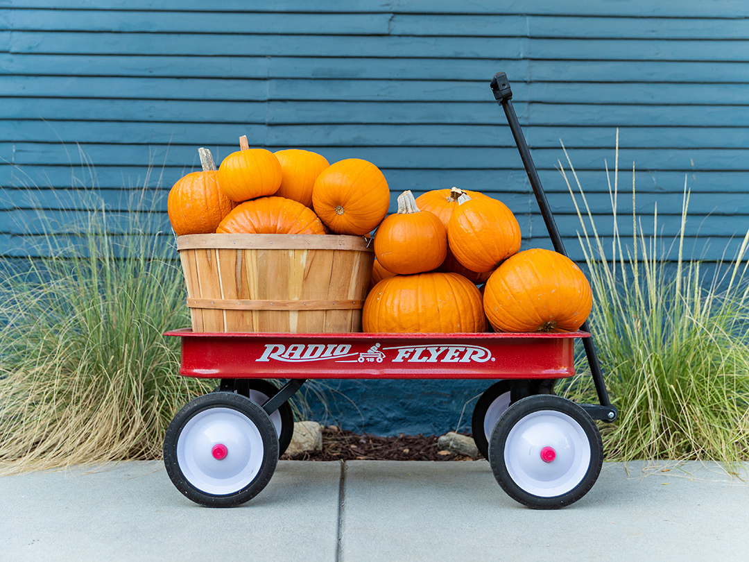 Pumpkins wagon