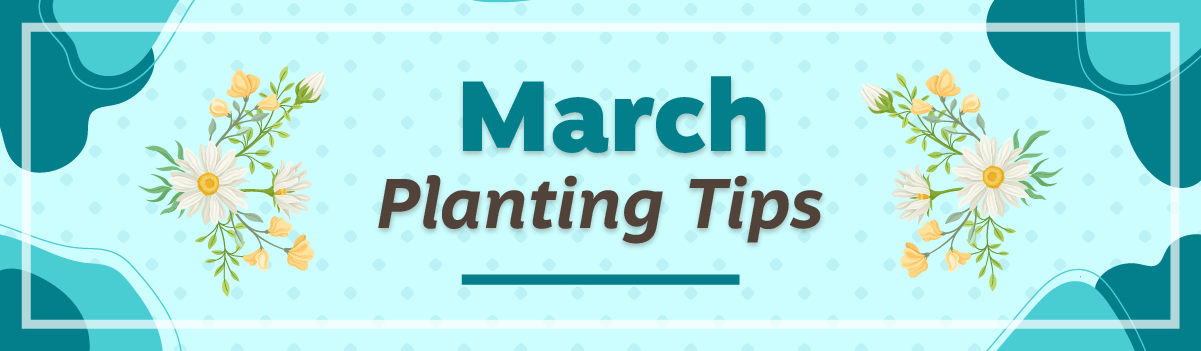 March Planting Tips Email